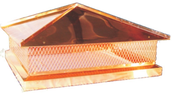 Custom Copper Hip Image